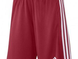 Adidas Squadra 21 Short M GN5771